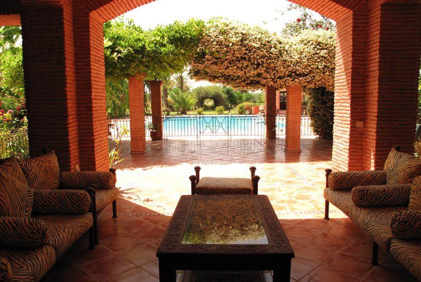 Terrasse et piscine 6 bis